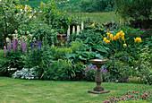 LAUNA SLATTER'S Garden, OXON: STONE BIRD TABLE AND BORDER with HOSTA 'Blue Moon', ACONITUM, Viola CORNUTA, Salvia TURKESTANICA, IRISES AND LUPINS