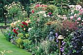 ROSES FLOURISH IN A COLOURFUL BORDER IN CAROLYN HUBBLE'S Garden, SHROPSHIRE