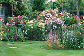 CAROLYN HUBBLE'S Garden, SHROPSHIRE: LAWN AND BORDERS BURSTING with ROSES