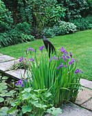 Pool with Metal BIRD AND Iris AND LAWN. Designer: SHEILA STEDMAN