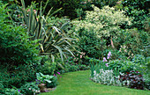 VIEW DOWN Garden with LAWN AND BORDERS with Iris AND PHORMIUM. Designer: SHEILA STEDMAN