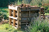 WOODEN COMPOST BIN On ALLOTMENT