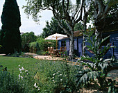 Blue SUMMERHOUSE with DECKING, TABLE, CHAIRS AND Parasol, BIRCH TREE TRUNKS, HAMMOCK, CARDOON AND GRAVEL. Designer: Clare MATTHEWS