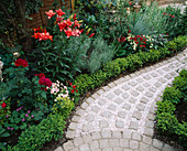 CURVING PATH with BRICK SETTS AND Pink GRAVEL Mulch SURROUNDED by Box BALLS, Red LILIES , ROSES AND NICOTIANA. Designer ANDREW ANDERSON