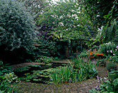 CIRCULAR POND with Water LILIES AND Iris FOLIAGE SURROUNDED by BRICK PATH, DESIGNED by Joe SWIFT. PYRUS SALICIFOLIA TO LEFT. TABLE AND CHAIRS with WOODED Pergola BEHIND.
