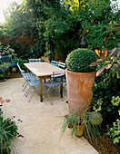 LARGE TERRACOTTA Pot PLANTED with Box Ball, Blue Cafe CHAIRS, Italian LIMESTONE TABLE AND PATIO. LISETTE PLEASANCE'S Garden, London