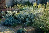 THE GRAVEL Garden at BURY Court, Hampshire