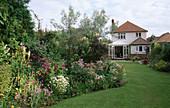 MALLEY Terry'S HOUSE-Lathyrus GRANDIFLORUS, Rosa GLAUCA, Viola CORNUTA, ACONITUM GRANDIFLORUM 'Alba', TANACETUM PARTHENIUM, HEUCHERA 'PLUM PUDDING', GERANIUM PRATENSE 'SUMMER Skies'