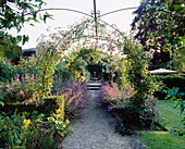 EASTLEACH HOUSE Garden, Gloucestershire: ROSE ARCHES with RAMBLING ROSE 'SEAGULL' AND Rosa 'THE FAIRY' AND Nepeta 'Six HILLS GIANT'