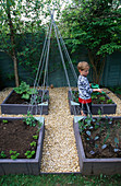 OLLIE WATERING THE DECORATIVE CHILDRENS POTAGER