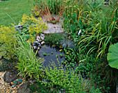 Wildlife POND with CIRCULAR WOODEN DECK IN DAVID AND MARIE CHASE'S Garden, Hampshire