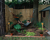 JUNGLE OUTPOST: BARK CHIPPINGS, DECK STEPPING STONES, DANIEL James IN HAMMOCK, POND, RHEUM PALMATUM, REED SCREENING, Leopard Pot with PHOENIX CANARIENSIS, CANDLES