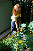 CONNIE WATERING SUNFLOWERS IN THE CHILDRENS POTAGER DESIGNED by Clare MATTHEWS