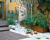 ROOF Garden with BAMBOO FENCING, White Boulders, Red CEDAR DECKING AND Water Feature: DESIGN by ALISON WEAR ASSOCIATES