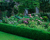 PETTIFERS Garden, OXFORDSHIRE, Designer: GINA PRICE: BORDER NEAR THE HOUSE PLANTED with ALLIUM CHRISTOPHII AND PAEONIA 'Bowl of BEAUTY'