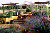 GRAVEL Garden with RENDERED CONCRETE WALLS, DECKING, Pergola, TABLE AND CHAIRS, Cream Parasol AND PLANTING of Verbena BONARIENSIS AND PEROVSKIA. Designer: Mark LAURENCE
