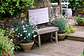 BENCH Made of LEFT OVER DECKING with CONTAINERS of ARGYRANTHEMUM 'CHELSEA Girl'. THE FOVANT Hut, Wiltshire