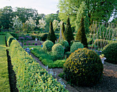 PETTIFERS, OXFORDSHIRE: THE Parterre IN SPRING with CLIPPED Box AND YEW TOPIARY SHAPES AND MALUS HUPEHENSIS Behind