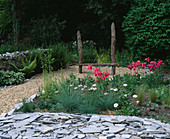 Designer: Clare MATTHEWS: THE WALLED Garden, Devon: SLATE, GRAVEL AND Mariette Tulipa IN Front of WOODEN SEAT