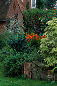 BORDER by LAWN with RAISED BED, CROCOSMIA 'SEVERN Sunrise', CAVALO De Nero, ATRIPLEX HORTENSIS RUBRA. PARSONAGE, OMBERSLEY, WORCESTERSHIRE