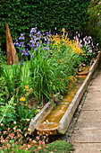 Water Feature: A RILL RUNS ALONGSIDE A PATH with Iris, Primula AND GEUM.IN THE BACKGROUND IS 'CHARRED SPIRES', A TIMBER SCULPTURE by ALSION CROWTHER. WINGWELL NURSERY, Rutland