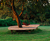 Clare MATTHEWS' Garden, Devon: DECK AROUND TREE with SWING SEAT, at DAWN