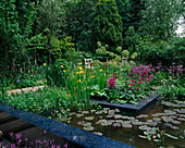 CHELSEA FLOWER Show 2005: THE REAL RUBBISH Garden, Designer: CLAIRE WHITEHOUSE. Wildlife POND / Pool with Yellow Iris AND Pink Primula