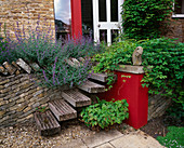 Holztreppe in Natursteinmauer führt zur Hintertür, Nepeta (Katzenminze), Akebia quinata (Klettergurke), Monatserdbeere (Fragaria), Kies, rote Mauer