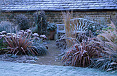 PETTIFERS, OXFORDSHIRE: FROSTY BORDER with Blue WOODEN BENCH, PHORMIUM AND SEDUM