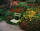 WOLLERTON Old HALL, SHROPSHIRE: Hot BORDER PLANTED with Yellow AND Red FLOWERS with Blue BENCH
