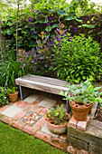 KATHY TAYLORS Garden, London: A PLACE TO SIT: WOODEN SEAT / BENCH SURROUNDED by FOLIAGE PLANTS INCLUDING COTINUS 'Grace'