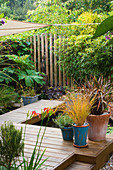KATHY TAYLORS Garden, London: VIEW of BACK Garden with DECK AND DECK WALKWAY PAST POND / Pool with CONTAINERS of PHORMIUMS AND GRASSES . at BACK IS WOODEN FENCE