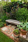KATHY TAYLORS Garden, London: A PLACE TO SIT: BACK Garden with WOODEN BENCH / SEAT COTINUS 'Grace'