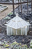 WOODPECKERS, WARWICKSHIRE, Winter: Old FASHIONED Cloche IN THE POTAGER, IN Frost