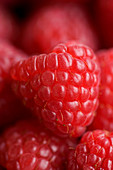 CLOSE UP of RASPBERRY. Organic, NATURAL, HEALTHY