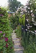 Amelia HEATH Garden, 1, CROSS VILLAS, SHROPSHIRE: STEPPING STONE PATH Beside THE HOUSE with GRAVEL