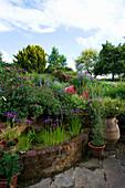 MARINERS Garden, BERKSHIRE. Designer FENJA ANDERSON - Pool Beside THE Patio with Iris ENSATA. Behind IS Wine AND Red BORDER with PENSTEMON FIREBIRD, CAMPANULA PERSICIFOLIA