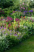 MARINERS Garden, Berkshire, Designer FENJA ANDERSON - Wine AND Red BORDER - GERANIUM SPINNERS, PENSTEMON GARNET, ASTRANTIA Claret, PAPAVER SOMNIFERUM, VARIEGATED Mint, ALCHEMILLA
