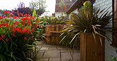 DARREN CLEMENT'S Garden, Staffordshire: COURTYARD with Hot TUB AND CROCOSMIA 'LUCIFER'