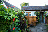 DARREN CLEMENT'S Garden, Staffordshire: COURTYARD with FATSIA, Phormium, Canna TROPICANA AND Hot TUB
