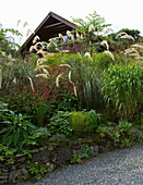 HUNTING BROOK, CO WICKLOW, REPUBLIC of IRELAND: Designer JIMI BLAKE - THE HOUSE with BORDER of CORTADERIA RICHARDII AND PERSICARIA AMPLEXICAULIS
