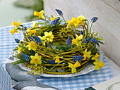 Blau - gelber Frühlingskranz aus Cornus (Gelbholz - Hartriegel)