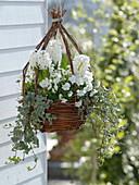Korbampel mit weißen Frühlingsblühern