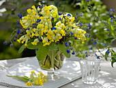 Gelb-blauer Frühlingsstrauß : Primula veris (Echte Schlüsselblume