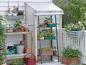 Selbstgebautes kleines Folien-Gewächshaus zur Anzucht auf dem Balkon