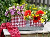 Wiesenblumen in rot-weiß-karierten Geschenk-Tüten