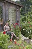 Frau sitzt auf Stuhl am Gartengerätehaus mit blühendem Papaver somniferum