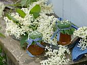 Blüten und Gelee von Sambucus nigra (Holunder)