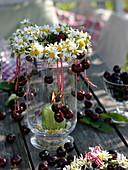 Sommerliche Tischdekoration mit Süßkirschen und Kamille