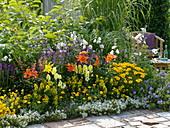 Buntes Sommerbeet mit Lilien